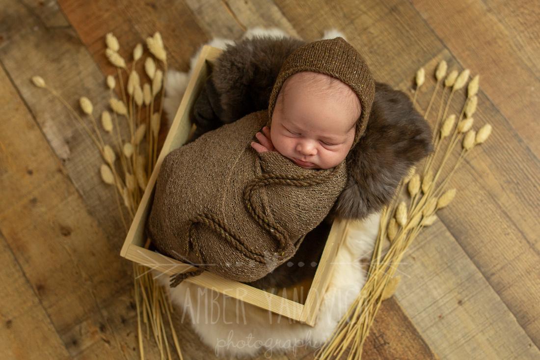 Ethan Newborn -1