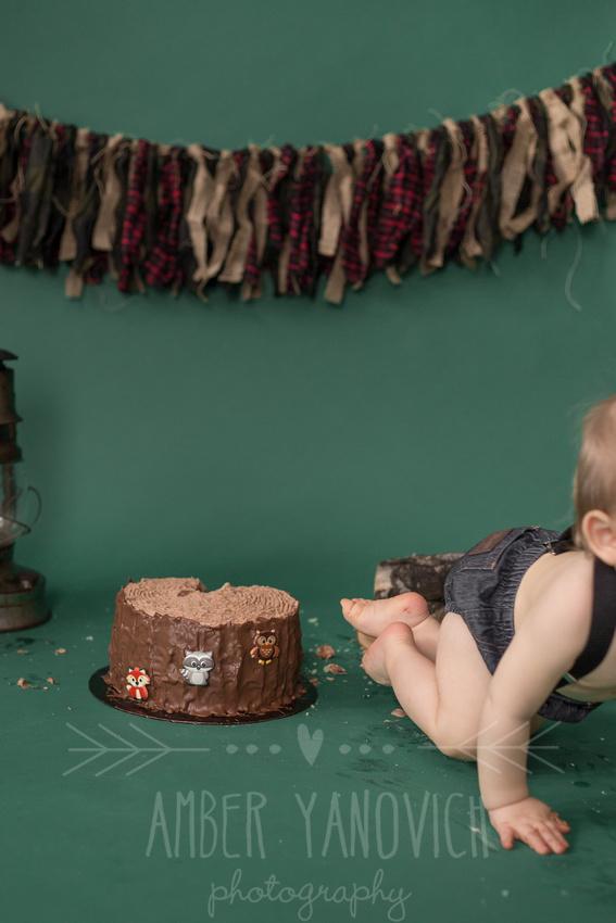 Colt Cake Smash (7)
