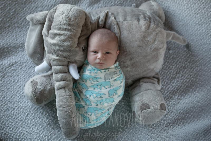 Lochlan newborn-42